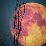la-pleine-lune-et-la-voyance